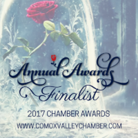 New Business Award Finalist 2017